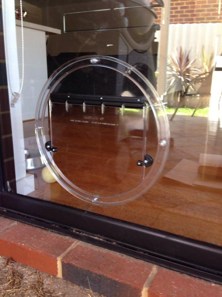 Wa Glass Pet Doors Gallery Dog Doors Cat Doors Perth