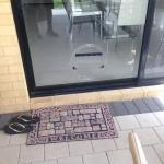 Glass Pet Doors Perth
