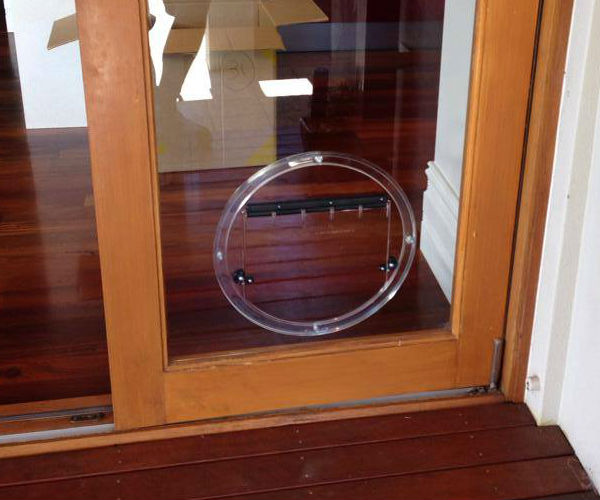 Glass Pet Doors Perth Wa Glass Pet Doors